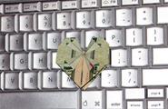 Educazione Sessuale online. Internet maestra d'amore per giovani e adulti