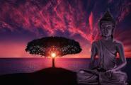 La Saggezza della Meditazione - Jamgon Kongtrul Rinpoche