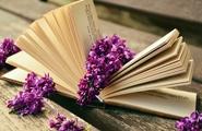 Libri sulla meditazione: i nostri suggerimenti