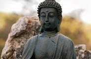 La meditazione a Bologna