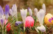 La Pasqua: momento di rinnovamento