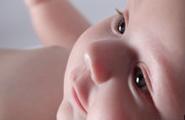 Lo sviluppo dei sensi nel feto