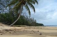 Psicologia del turismo alternativo: le motivazioni dell'ecoturismo