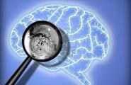Le neuroscienze e il processo psicoanalitico relazionale