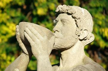 Archetipi del maschile: Dioniso