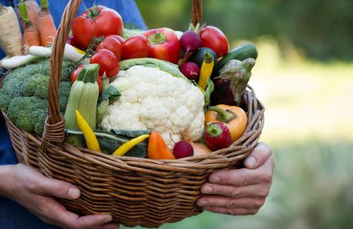 Dieta e resilienza, il cibo per la salute mentale