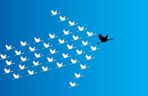 Come il leader può influenzare l'andamento del gruppo