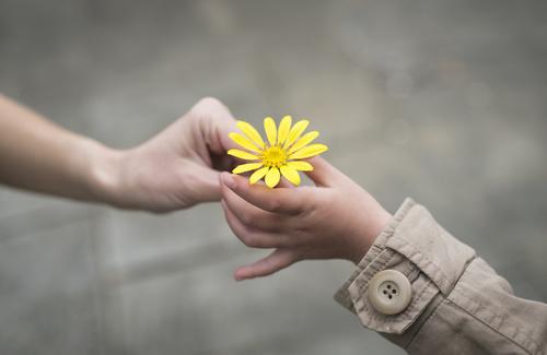 La gentilezza come sfida